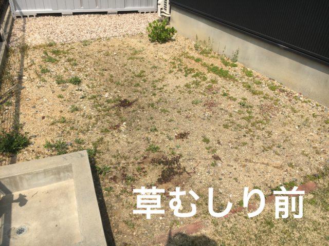 草むしりをする前