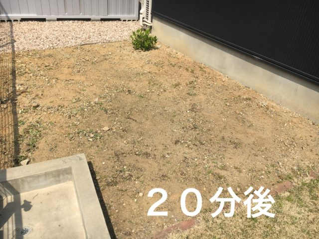 草むしりをした後